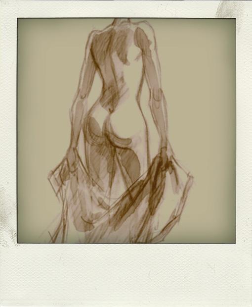 http://gregoire.berquin.free.fr/blog/dos-pola01.jpg